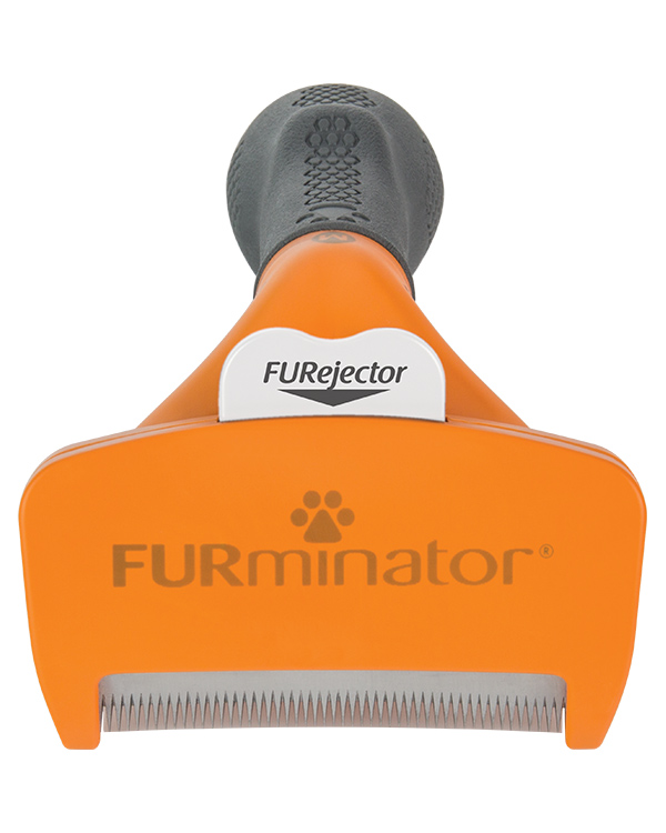 DeShedding Tool for Short Haired Medium Dogs