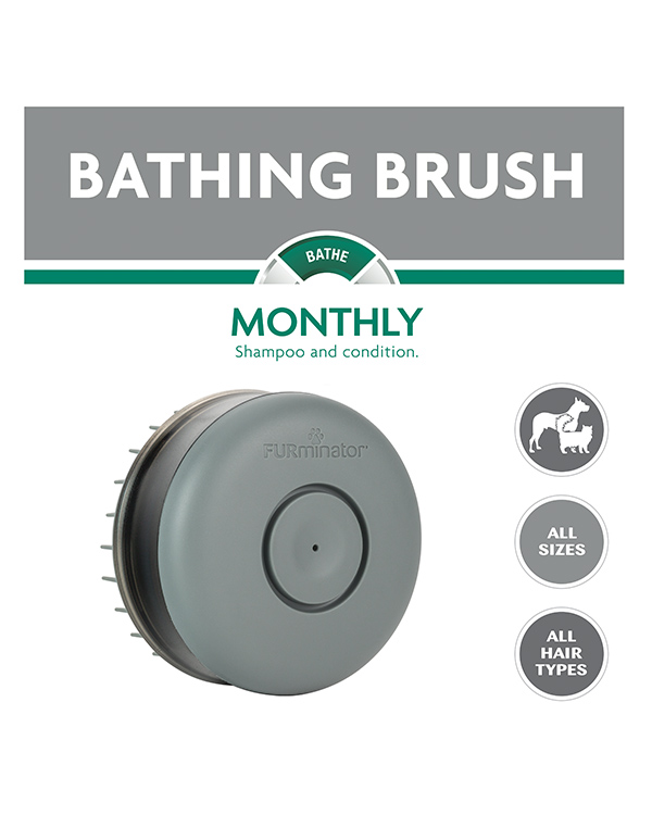 Bathing Brush For Dogs